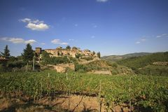Italy, Tuscany, Chianti zone, Montefioralle village. Italy, Tuscany, Chianti zone, Montefioralle village on the hill and vienyard stock images