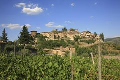 Italy, Tuscany, Chianti zone, Montefioralle village. Italy, Tuscany, Chianti zone, Montefioralle village on the hill and vineyard royalty free stock photography