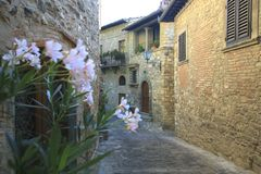 Italy, Tuscany, Chianti zone, Montefioralle village. The samml alley in the village and house stock photos