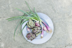 Italy, Tuscany, Magliano, Artichokes and spring onions in plate Royalty Free Stock Photography