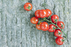 Italy, Tuscany, Magliano, Bunch of cherry tomatoes Royalty Free Stock Images