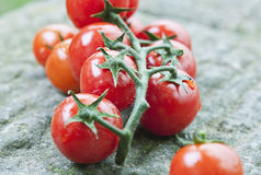 Italy, Tuscany, Magliano, Bunch of cherry tomatoes, close up Stock Photos