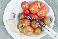 Italy, Tuscany, Magliano, Close up of tomatoes in bowl with bread slice and cutlery Stock Photos