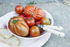 Italy, Tuscany, Magliano, Close up of tomatoes in bowl with bread slice and cutlery Stock Photography