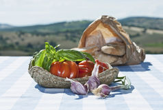 Italy, Tuscany, Magliano, Tomatoes, garlic and bread on table Stock Image