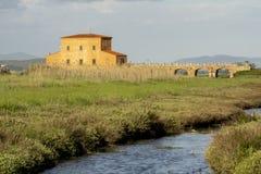 Italy Tuscany Maremma Castiglione della Pescaia Grosseto, natural reserve of Diaccia Botrona. Tuscany Maremma Castiglione della Pescaia Grosseto, natural reserve royalty free stock image