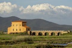 Italy Tuscany Maremma Castiglione della Pescaia Grosseto, natural reserve of Diaccia Botrona. Tuscany Maremma Castiglione della Pescaia Grosseto, natural reserve stock images