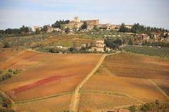 Italy, Tuscany, Panzano in Chianti and vineyard. stock photo
