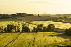 Italy. Tuscany. Rural landscape at dawn Royalty Free Stock Photos