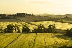 Italy. Tuscany. Rural landscape at dawn Royalty Free Stock Photos