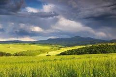 Italy. Tuscany. Rural landscape Stock Photos