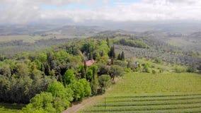 italy tuscany Sikt uppifrån till fälten av vingårdar Härligt landskap, kullar, skogar, fält av horisonten arkivfilmer