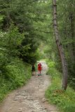 Italy, Valle d`Aosta, july 29 2017: two hikers walking on a path on the mountains. Italy, Valle d`Aosta, july 29 2017: two hikers walking in a wood on the Royalty Free Stock Photo