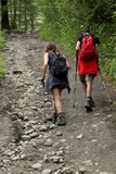 Italy, Valle d`Aosta, july 29 2017: two hikers walking on a pathon the mountains. Italy, Valle d`Aosta, july 29 2017: two hikers walking in a wood on the Royalty Free Stock Photos