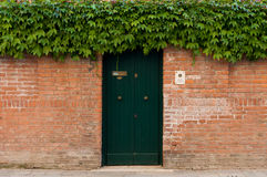 Italy Venice door and bushes Stock Photography