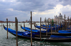 Italy Venice Gondolas Stock Images