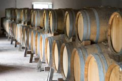 ITALY WINEMAKING BARRELS CELLAR. Wine barrels in cellar in Italy, Tuscan royalty free stock images