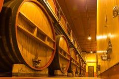 ITALY WINEMAKING BARRELS CELLAR. Wine barrels in cellar in Italy, Tuscan stock photo