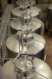 Italy: winemaking (Franciacorta) Royalty Free Stock Photography