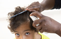 Itchy Scalp from Head Lice back view royalty free stock image