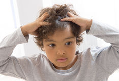 Itchy Scalp from Head Lice of a schoolchild. Little boy portrait of Itchy Scalp from Head Lice Stock Photos
