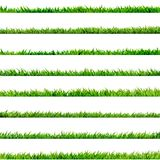 8 item set, small Grass. EPS 10. 8 item set, small Grass isolated on white. And also includes EPS 10 vector Royalty Free Stock Photography