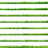 8 item set, small Grass. EPS 10. 8 item set, small Grass isolated on white. And also includes EPS 10 vector Stock Image