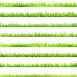 8 item set, small Grass. EPS 10. 8 item set, small Grass isolated on white. And also includes EPS 10 vector Stock Photography