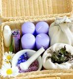 Items de la medicina herbaria Imagen de archivo libre de regalías