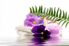 Items del balneario púrpuras Imagen de archivo libre de regalías