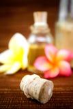 Items del balneario y flores tropicales imágenes de archivo libres de regalías