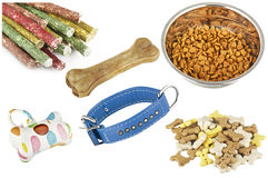 Items for dogs Stock Image