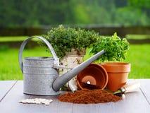 Items que cultivan un huerto Imagen de archivo