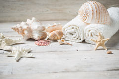 Items for spa, Sea shells Stock Image