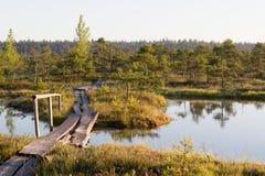 Itinéraire aménagé pour amateurs de la nature dans un marais Images libres de droits