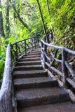 Itinéraire aménagé pour amateurs de la nature en Costa Rica Images stock