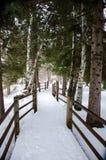 Itinéraire aménagé pour amateurs de la nature en hiver Image libre de droits