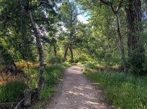 Itinéraire aménagé pour amateurs de la nature parc à Boise, Idaho le long du côté de Boise River Photo libre de droits