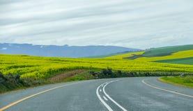 Itinéraire de jardin en Afrique du Sud image libre de droits