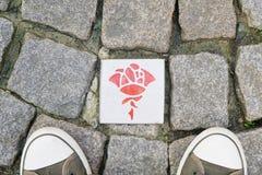 Itinéraire de Rose à Hildesheim Allemagne Photos libres de droits