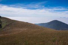 Itinéraire de trekking de la savane de prairie Images libres de droits