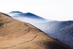 Itinéraire de trekking de la savane de prairie Photographie stock