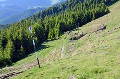 Itinerário da floresta da montanha Foto de Stock Royalty Free