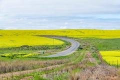 Itinerario del giardino nel Sudafrica fotografia stock