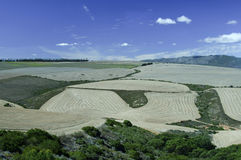 Itinerario del giardino, Sudafrica Fotografia Stock Libera da Diritti