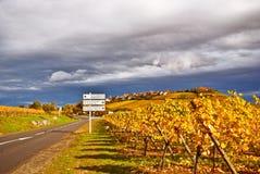 Itinerario del vino Fotografie Stock Libere da Diritti