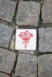 Itinerario di Rosa a Hildesheim Germania Fotografia Stock Libera da Diritti