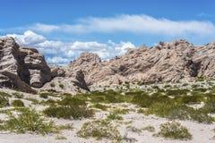Itinerario famoso 40 in Salta, Argentina fotografia stock libera da diritti