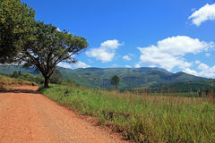 Itinerario panoramico in Sudafrica Fotografie Stock Libere da Diritti