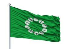 Ito City Flag On Flagpole, Giappone, prefettura di Shizuoka, isolata su fondo bianco Royalty Illustrazione gratis